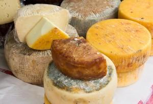 Una selezione di formaggi